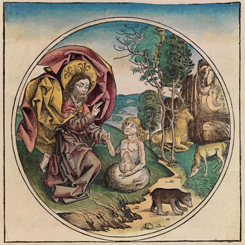 Glaube-Leben-Theologie 3: Schöpfer